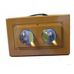 Projecteur led 100w 30°